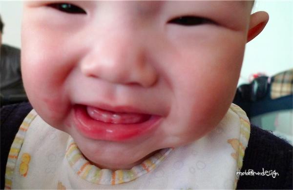 Thor的小牙齒[拍攝日:2012:01:01]-01.jpg
