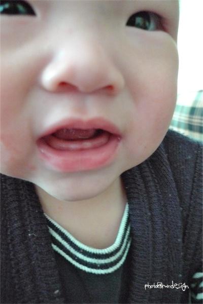 Thor的小牙齒[拍攝日:2012:01:01]-02.jpg