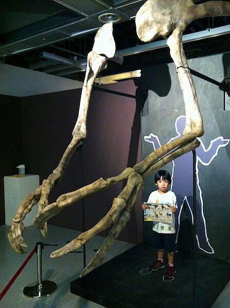 Todd & Thor兄弟倆的侏羅紀公園歷險記-09