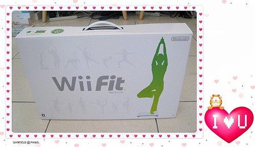 Wii Fit-01.jpg