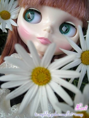 Blythe Veronica Lace 蕾絲01.jpg