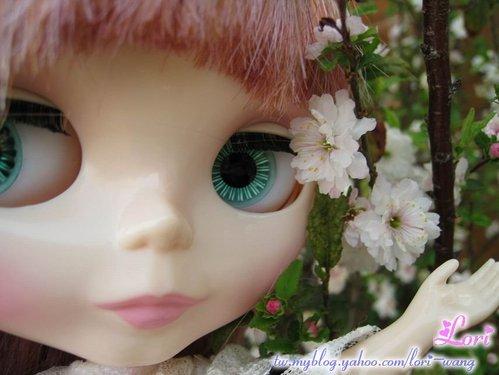 Blythe Veronica Lace 蕾絲04.jpg