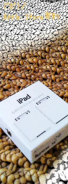Apple iPad Camera Connection Kit.jpeg