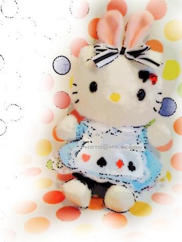 愛莉絲kitty