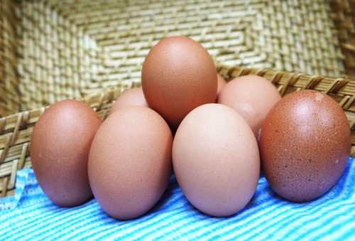 營養價值高,應用廣泛的「蛋」