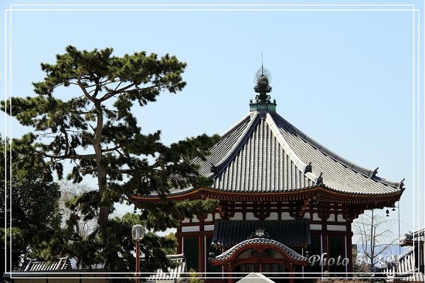 奈良古寺與梅花鹿2010_0408_114433.jpg