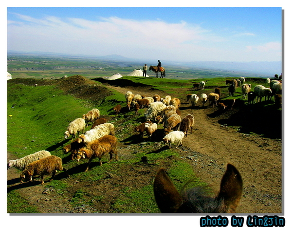 南山牧場騎馬