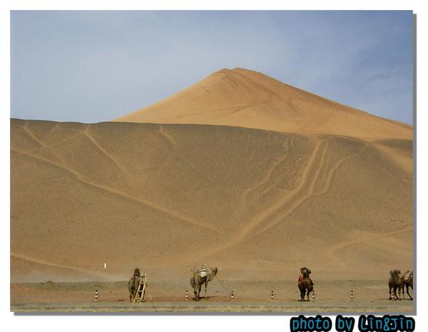 柏孜克理克千佛洞~駱駝與沙漠~