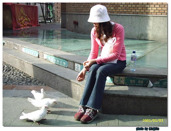 國際大巴札廣場餵鴿子