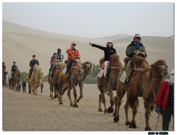 敦煌鳴砂山騎駱駝