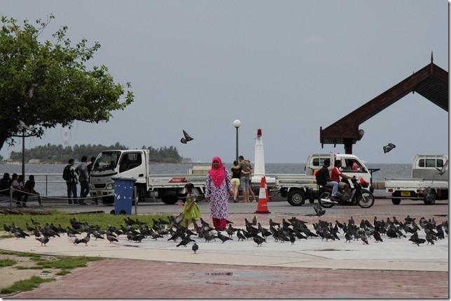 Maldives2012-1028-192633