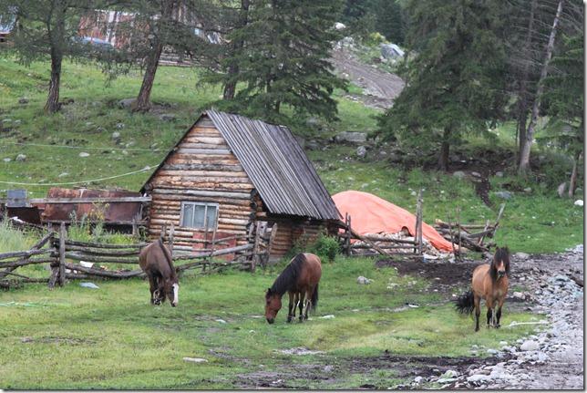北疆2013_0725_075954