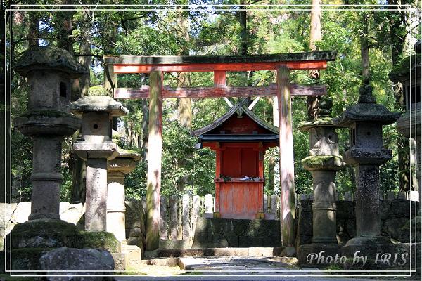 奈良古寺與梅花鹿2010_0408_123753.jpg