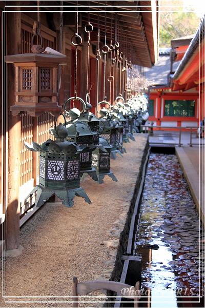 奈良古寺與梅花鹿2010_0408_132857.jpg