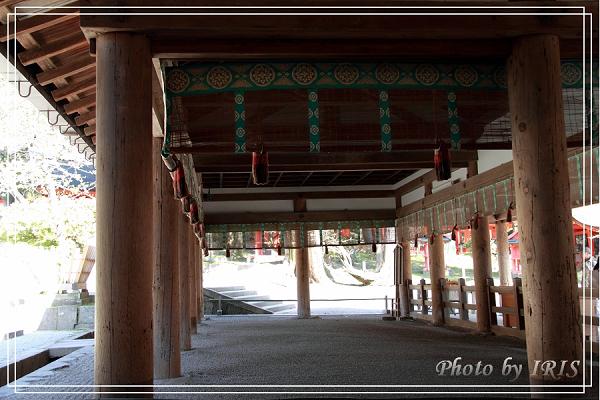奈良古寺與梅花鹿2010_0408_133626.jpg