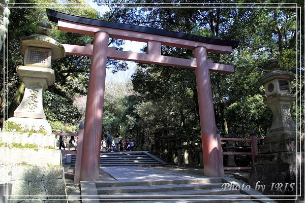 奈良古寺與梅花鹿2010_0408_125725.jpg