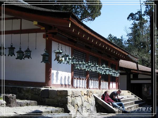 奈良古寺與梅花鹿2010_0408_132628.jpg