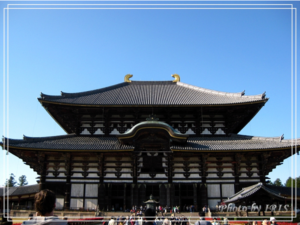 奈良古寺與梅花鹿2010_0408_150242.jpg