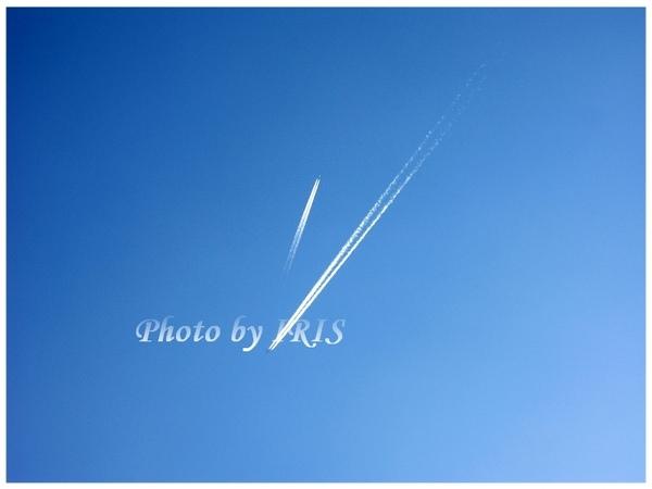 PICT7160.jpg