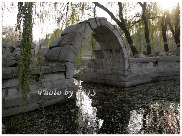 PICT8979.jpg