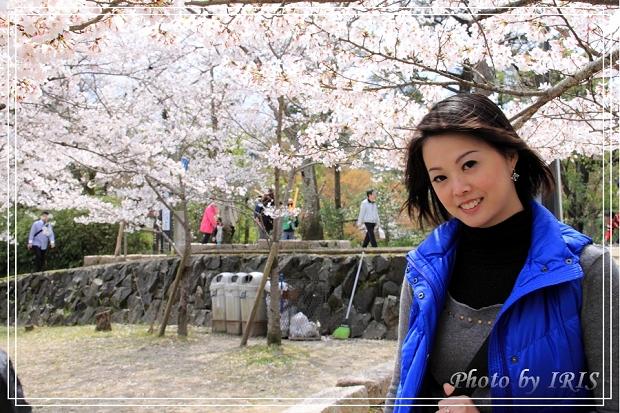 京都文化遺產2010_0403_103221.jpg
