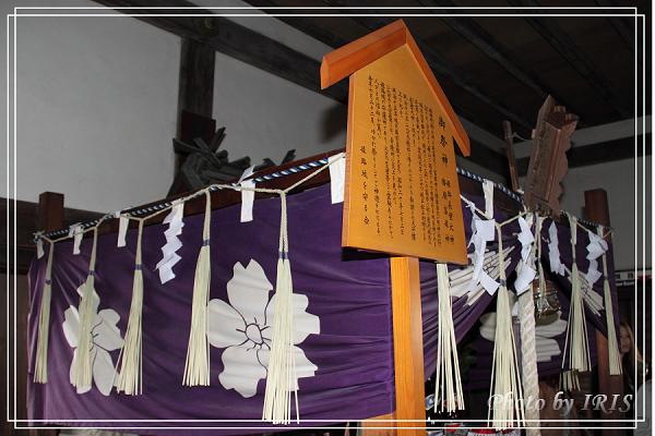 京都0405052.jpg