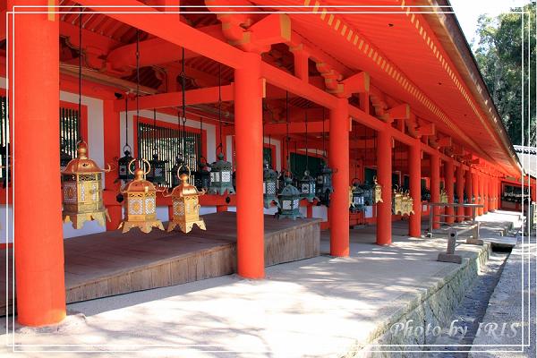 奈良古寺與梅花鹿2010_0408_131634.jpg