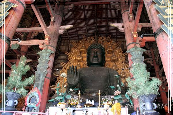 奈良古寺與梅花鹿2010_0408_151130.jpg
