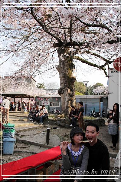 清水寺和服變裝2010_0406_144835.jpg
