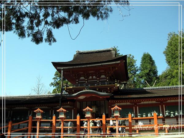 奈良古寺與梅花鹿2010_0408_131233.jpg