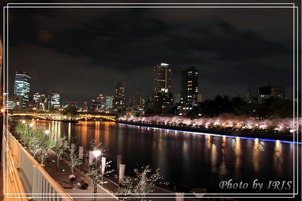 稻荷大社與大阪逛街2010_0407_193739.jpg