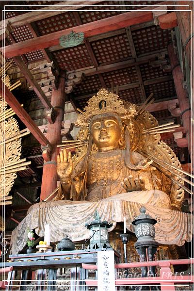 奈良古寺與梅花鹿2010_0408_154224.jpg