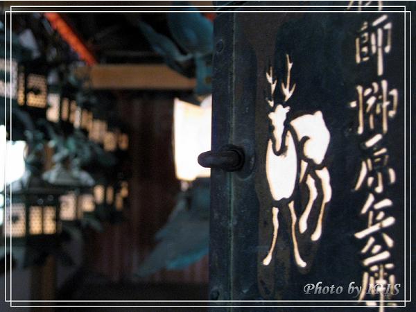 奈良古寺與梅花鹿2010_0408_132401.jpg