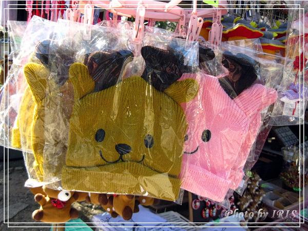 奈良古寺與梅花鹿2010_0408_145052.jpg