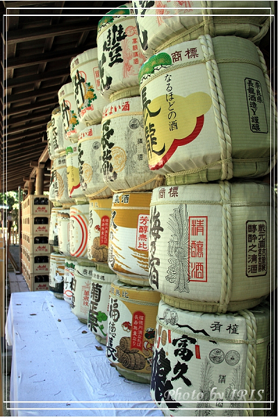 奈良古寺與梅花鹿2010_0408_125607.jpg