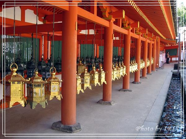 奈良古寺與梅花鹿2010_0408_132730.jpg