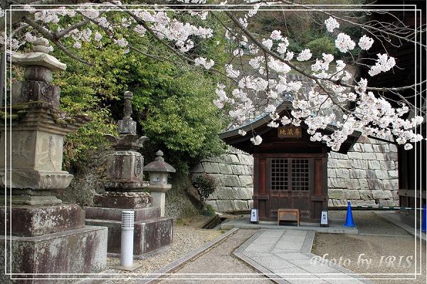 清水寺和服變裝2010_0406_105124.jpg