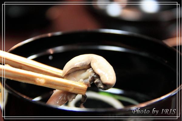 奈良古寺與梅花鹿2010_0408_185204.jpg