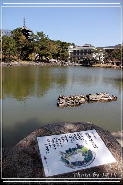 奈良古寺與梅花鹿2010_0408_112955.jpg