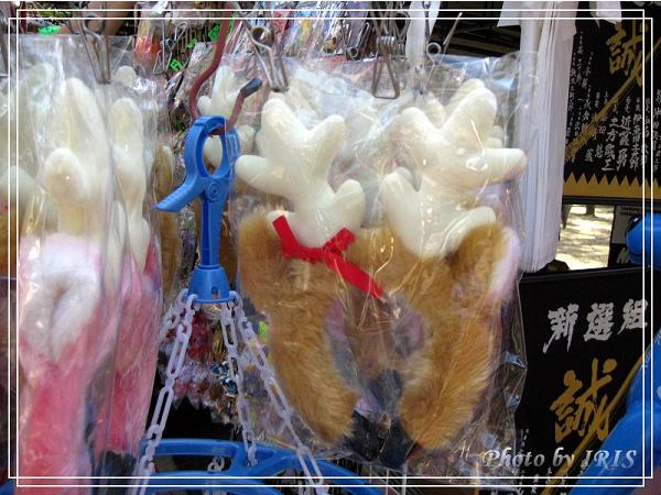 奈良古寺與梅花鹿2010_0408_145021.jpg