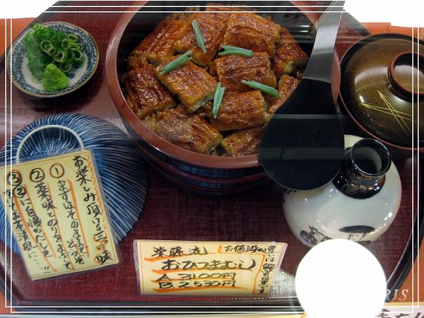 奈良古寺與梅花鹿2010_0408_190231.jpg