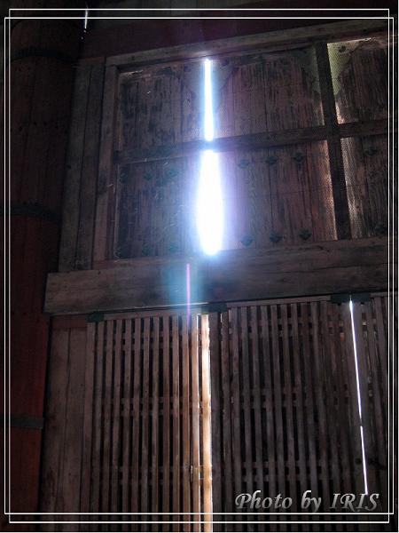 奈良古寺與梅花鹿2010_0408_151435.jpg