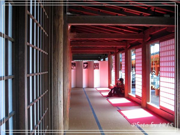 奈良古寺與梅花鹿2010_0408_133837.jpg