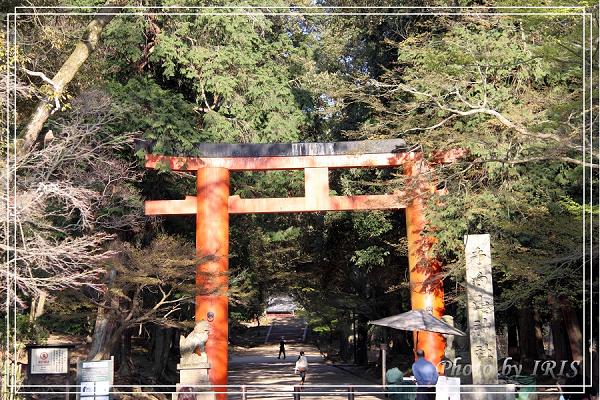 奈良古寺與梅花鹿2010_0408_155210.jpg
