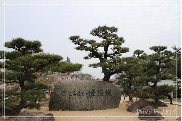 京都0405001.jpg