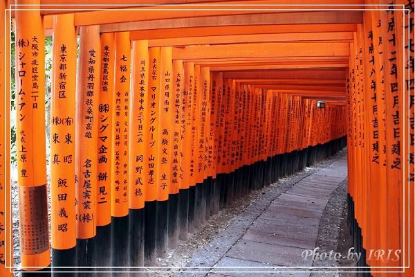 稻荷大社與大阪逛街2010_0407_100216.jpg