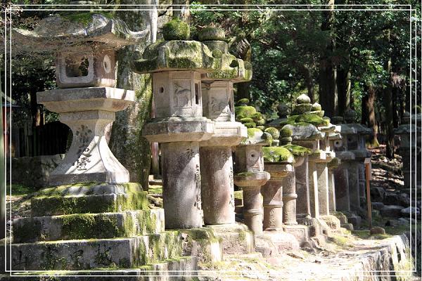 奈良古寺與梅花鹿2010_0408_123529.jpg
