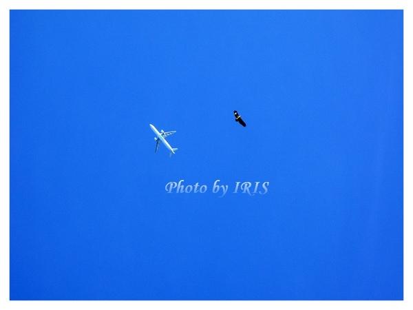 巴里島PICT0112.jpg