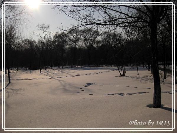 太陽島冰雪大世界-65.jpg