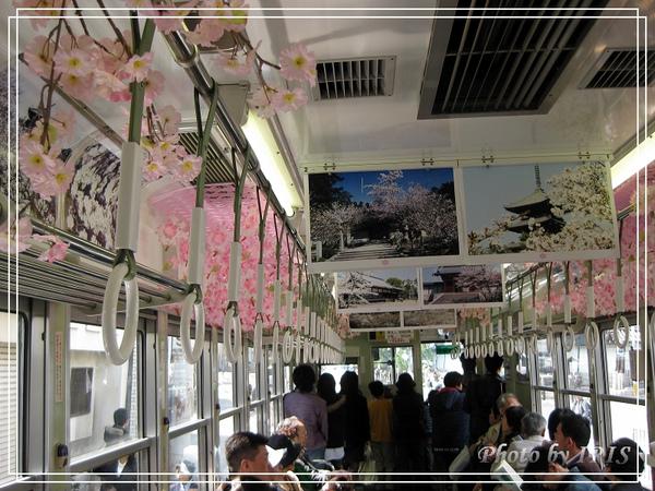 京都文化遺產2010_0403_121308.jpg